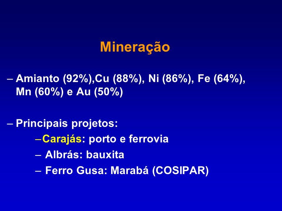 –Amianto (92%),Cu (88%), Ni (86%), Fe (64%), Mn (60%) e Au (50%) –Principais projetos: –Carajás: porto e ferrovia – Albrás: bauxita – Ferro Gusa: Mara