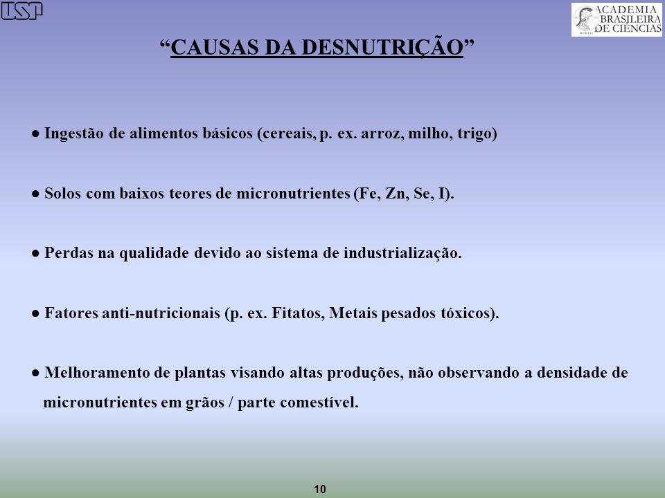 10 CAUSAS DA DESNUTRIÇÃO Ingestão de alimentos básicos (cereais, p. ex. arroz, milho, trigo) Solos com baixos teores de micronutrientes (Fe, Zn, Se, I