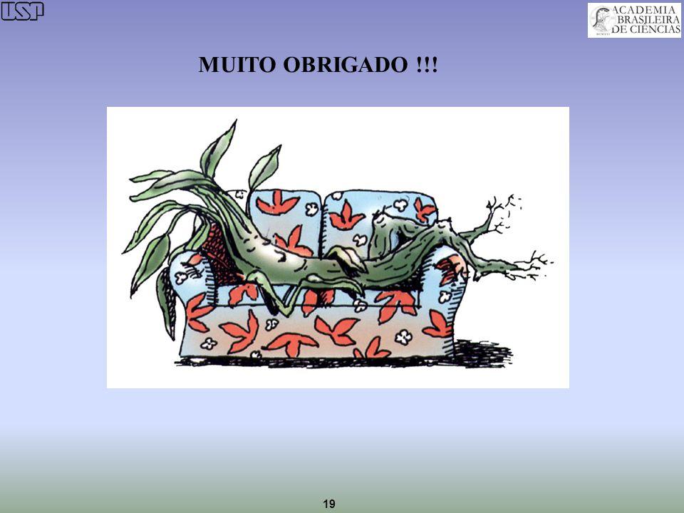 19 MUITO OBRIGADO !!!