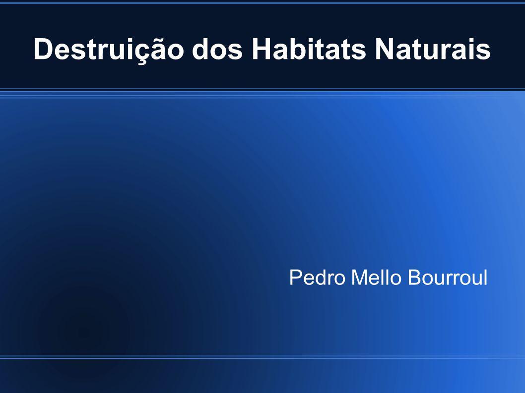 Destruição dos Habitats Naturais Pedro Mello Bourroul