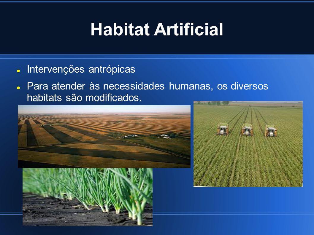 Habitat Artificial Intervenções antrópicas Para atender às necessidades humanas, os diversos habitats são modificados.