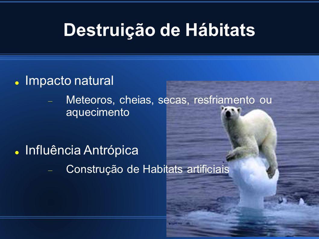 Destruição de Hábitats Impacto natural Meteoros, cheias, secas, resfriamento ou aquecimento Influência Antrópica Construção de Habitats artificiais