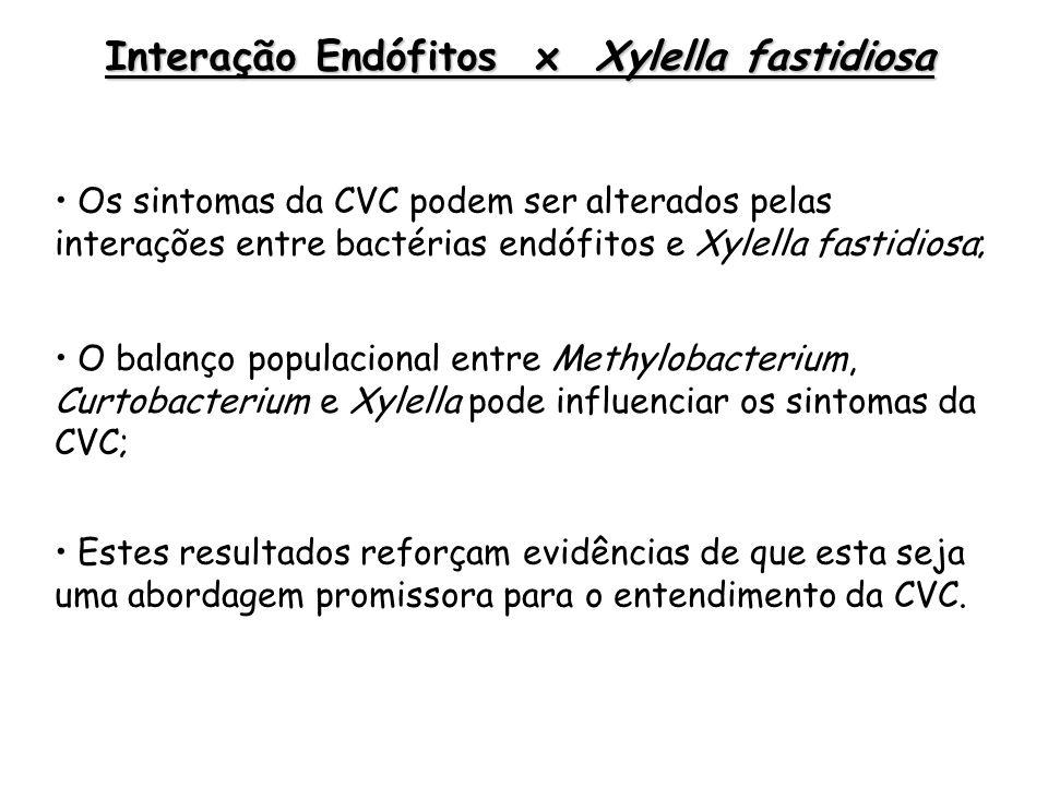 Methylobacterium sp.