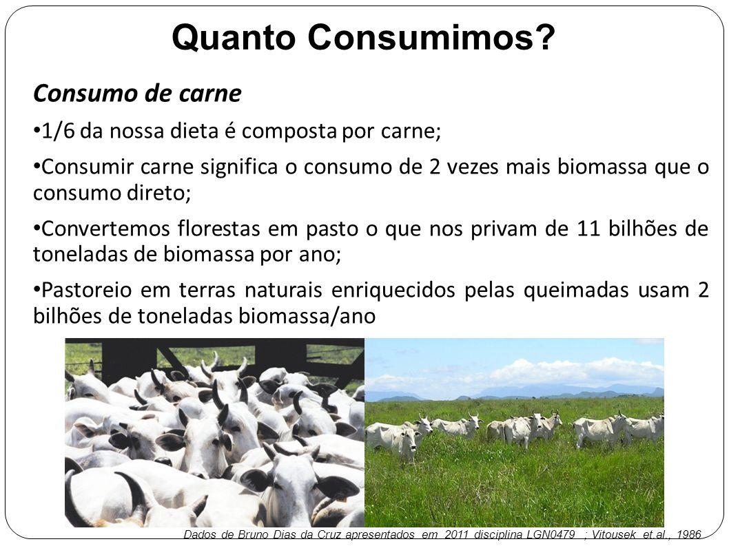 Consumo de carne 1/6 da nossa dieta é composta por carne; Consumir carne significa o consumo de 2 vezes mais biomassa que o consumo direto; Convertemo