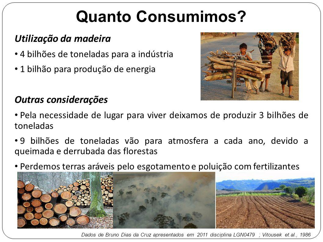 Utilização da madeira 4 bilhões de toneladas para a indústria 1 bilhão para produção de energia Outras considerações Pela necessidade de lugar para vi