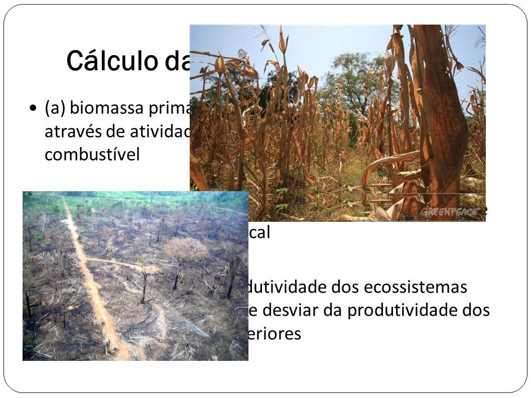 Cálculo da HANNP (AHPPL) (a) biomassa primária bruta retirada dos ecossistemas através de atividades para alimentos, rações, fibras e combustível (b)
