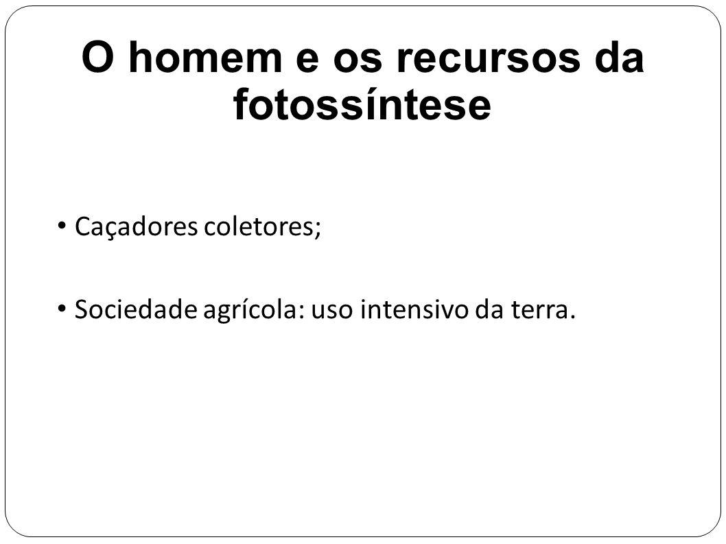 O homem e os recursos da fotossíntese Caçadores coletores; Sociedade agrícola: uso intensivo da terra.