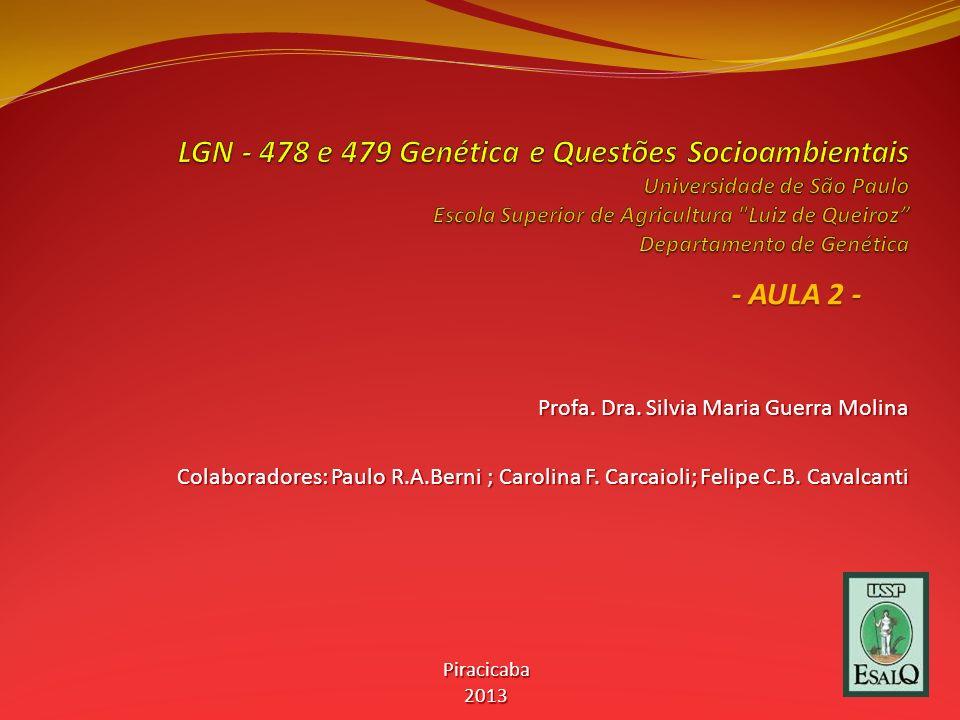 Profa.Dra. Silvia Maria Guerra Molina Colaboradores: Paulo R.A.Berni ; Carolina F.