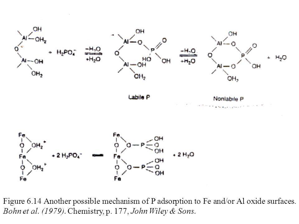 Figure 6.2 Schematic representation of the P cycle in soil.