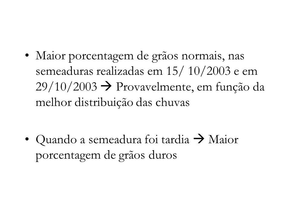 Maior porcentagem de grãos normais, nas semeaduras realizadas em 15/ 10/2003 e em 29/10/2003 Provavelmente, em função da melhor distribuição das chuva