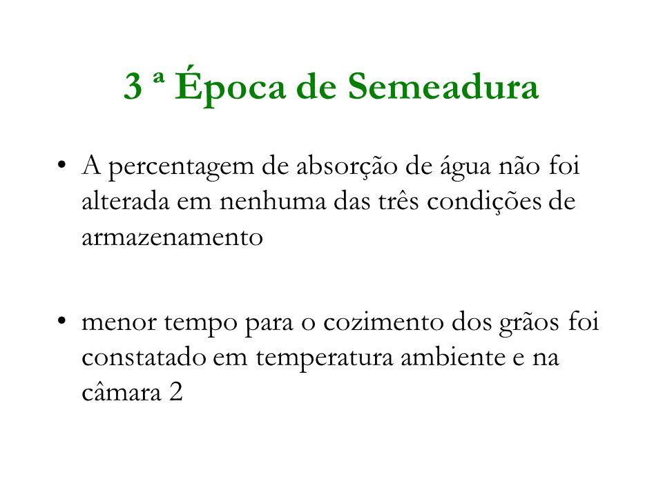 3 ª Época de Semeadura A percentagem de absorção de água não foi alterada em nenhuma das três condições de armazenamento menor tempo para o cozimento