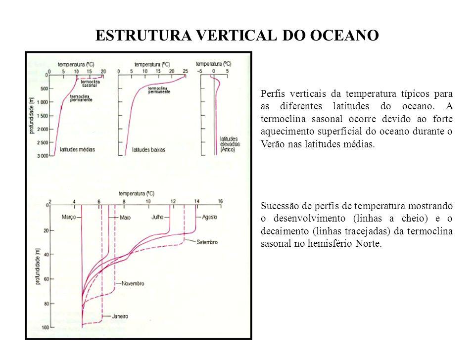 Perfis verticais da temperatura típicos para as diferentes latitudes do oceano. A termoclina sasonal ocorre devido ao forte aquecimento superficial do