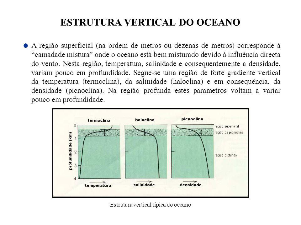 A região superficial (na ordem de metros ou dezenas de metros) corresponde à camadade mistura onde o oceano está bem misturado devido à influência dir