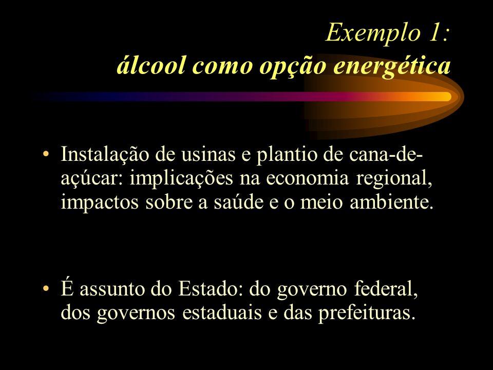 Exemplo 1: álcool como opção energética Instalação de usinas e plantio de cana-de- açúcar: implicações na economia regional, impactos sobre a saúde e