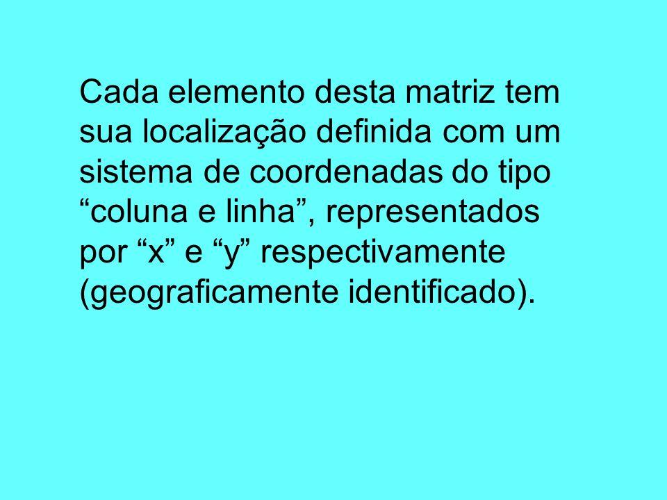 Cada elemento desta matriz tem sua localização definida com um sistema de coordenadas do tipo coluna e linha, representados por x e y respectivamente