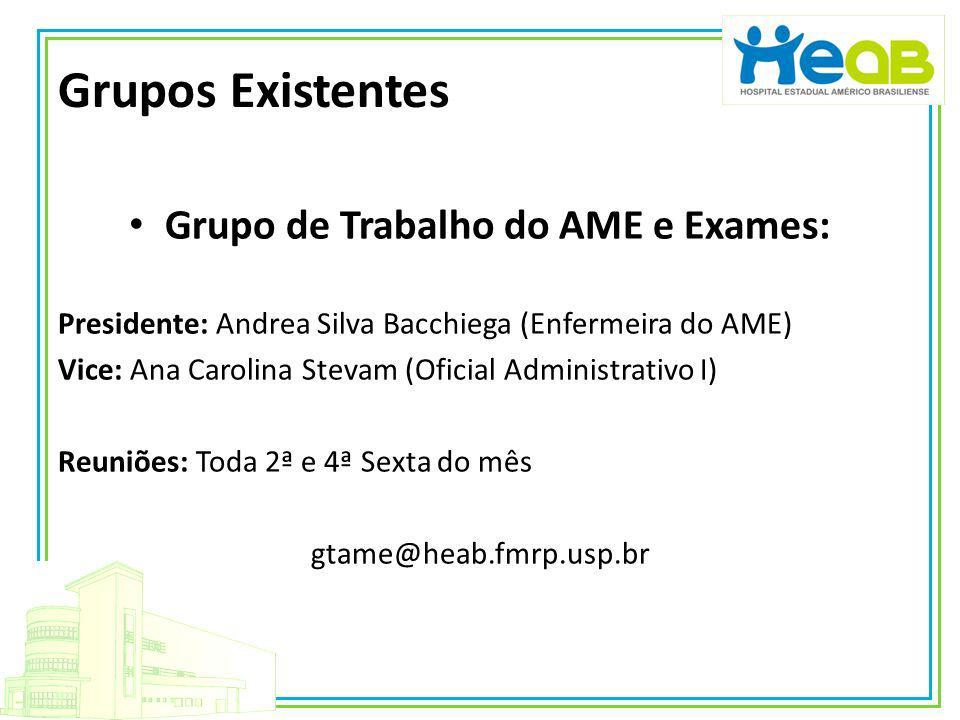 Grupos Existentes Grupo de Trabalho do AME e Exames: Presidente: Andrea Silva Bacchiega (Enfermeira do AME) Vice: Ana Carolina Stevam (Oficial Adminis