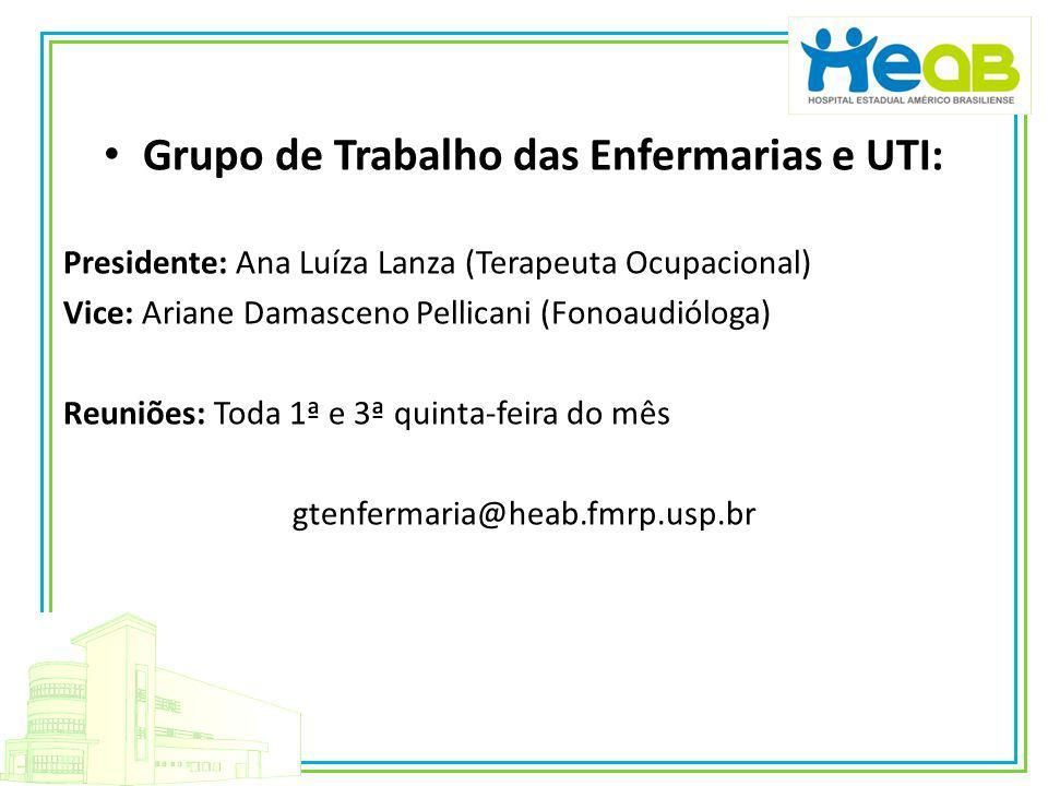 Grupo de Trabalho das Enfermarias e UTI: Presidente: Ana Luíza Lanza (Terapeuta Ocupacional) Vice: Ariane Damasceno Pellicani (Fonoaudióloga) Reuniões