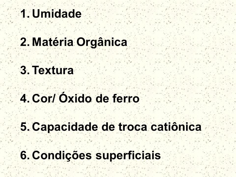 1.Umidade 2.Matéria Orgânica 3.Textura 4.Cor/ Óxido de ferro 5.Capacidade de troca catiônica 6.Condições superficiais