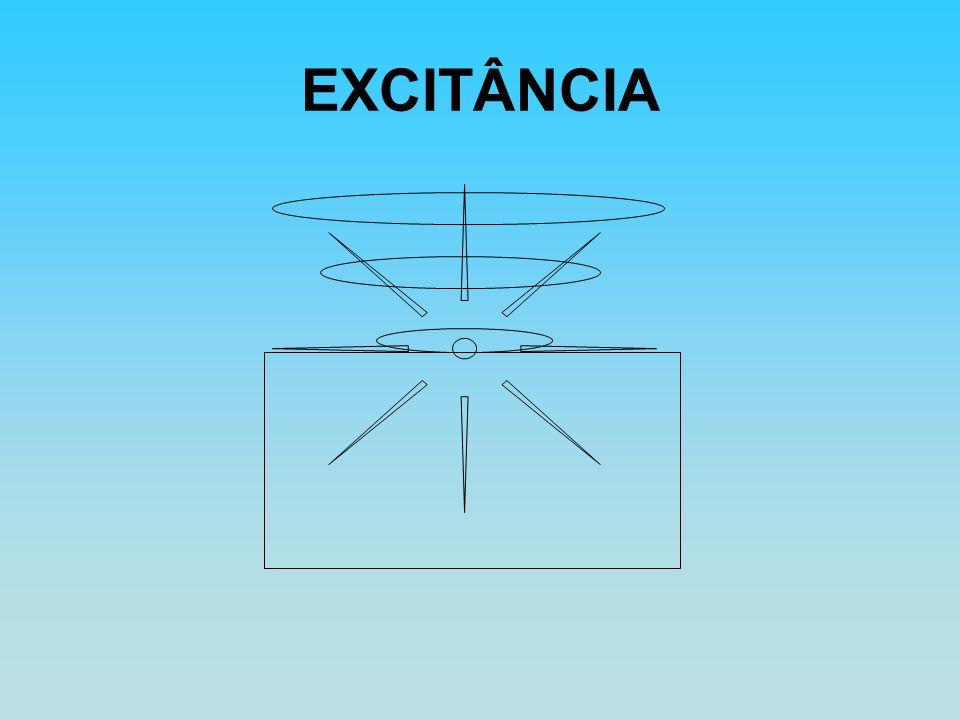 EXCITÂNCIA