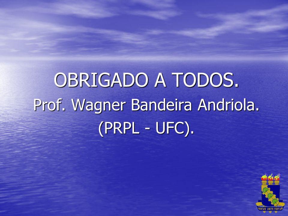 OBRIGADO A TODOS. Prof. Wagner Bandeira Andriola. (PRPL - UFC).