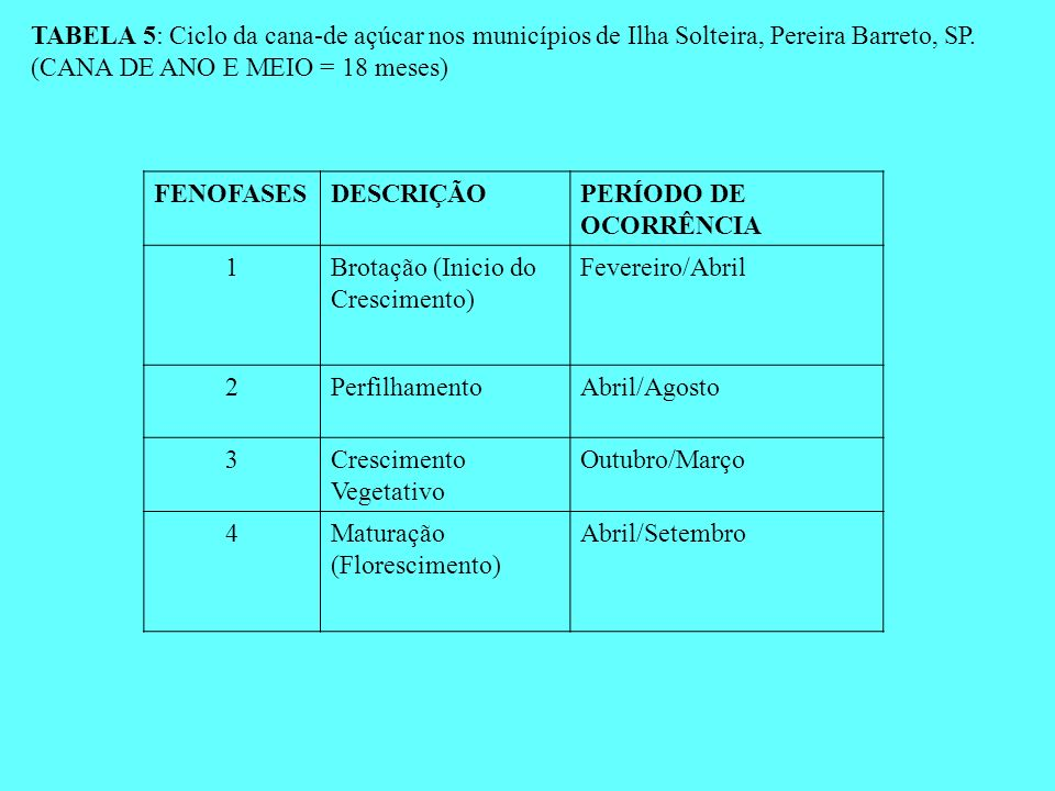 TABELA 5: Ciclo da cana-de açúcar nos municípios de Ilha Solteira, Pereira Barreto, SP. (CANA DE ANO E MEIO = 18 meses) FENOFASESDESCRIÇÃOPERÍODO DE O