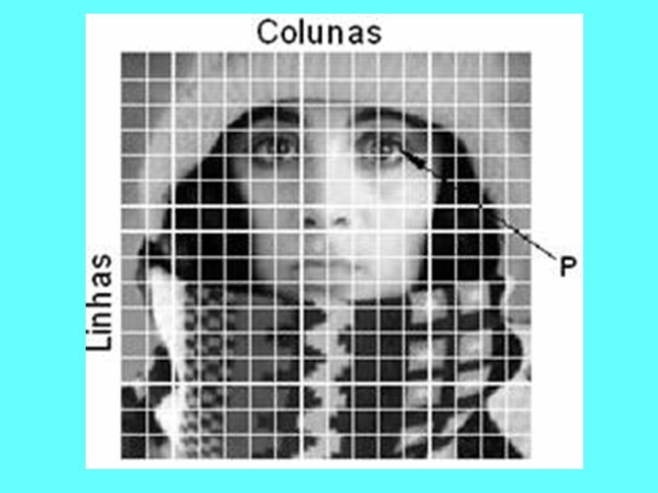 Cada elemento desta matriz tem sua localização definida com um sistema de coordenadas do tipo coluna e linha, representados por x e y respectivamente (geograficamente identificado).