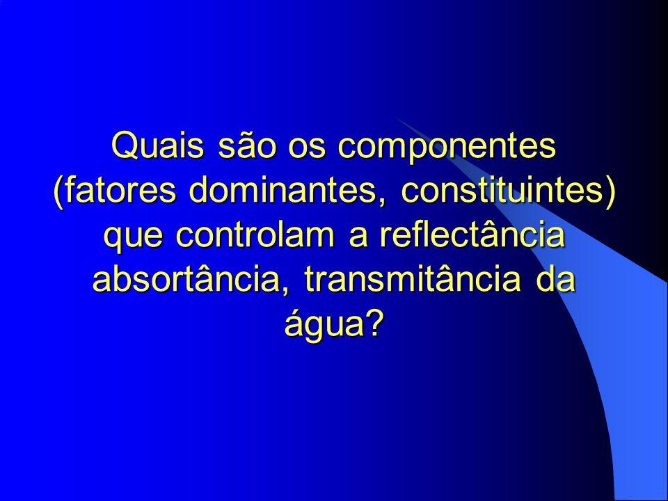 Quais são os componentes (fatores dominantes, constituintes) que controlam a reflectância absortância, transmitância da água?