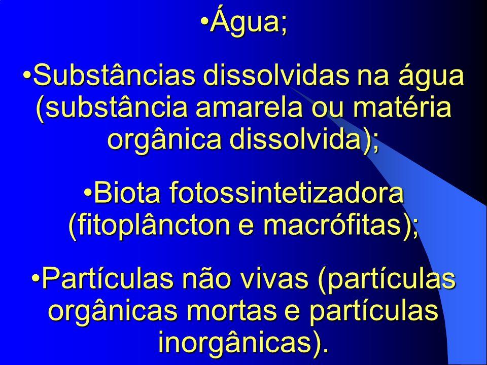 Água;Água; Substâncias dissolvidas na água (substância amarela ou matéria orgânica dissolvida);Substâncias dissolvidas na água (substância amarela ou