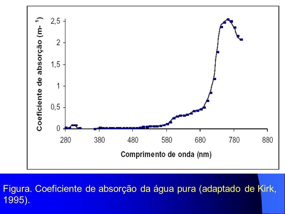 Figura. Coeficiente de absorção da água pura (adaptado de Kirk, 1995).