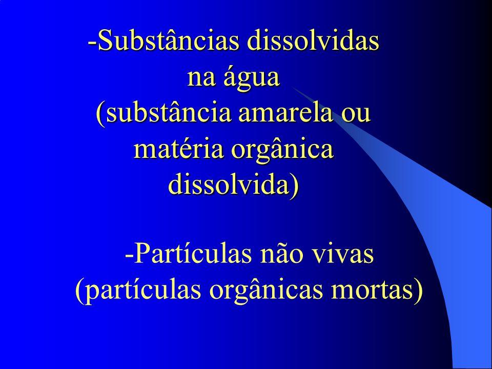 -Substâncias dissolvidas na água (substância amarela ou matéria orgânica dissolvida) -Partículas não vivas (partículas orgânicas mortas)