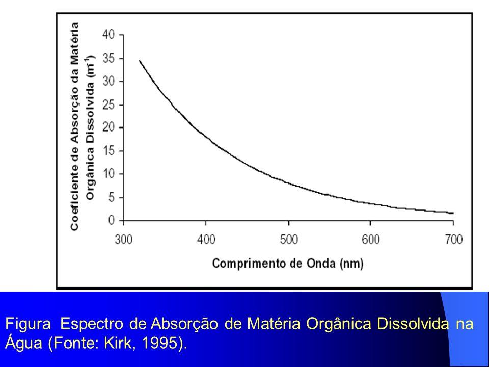 Figura Espectro de Absorção de Matéria Orgânica Dissolvida na Água (Fonte: Kirk, 1995).