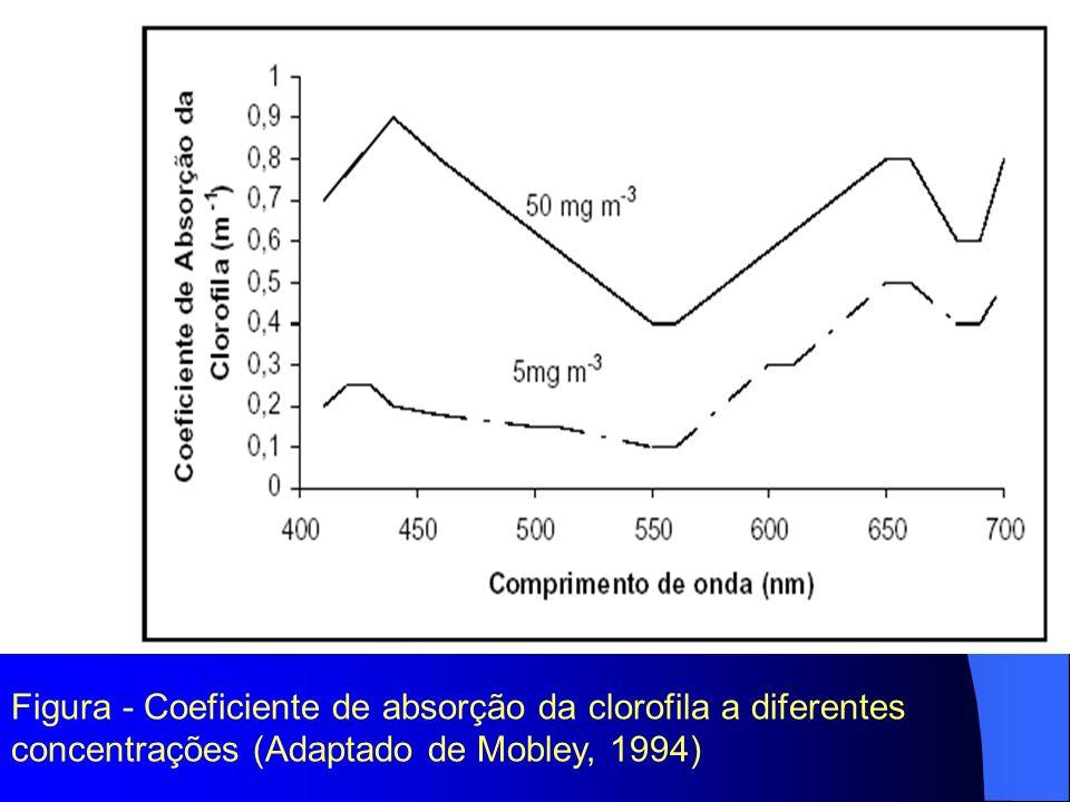 Figura - Coeficiente de absorção da clorofila a diferentes concentrações (Adaptado de Mobley, 1994)
