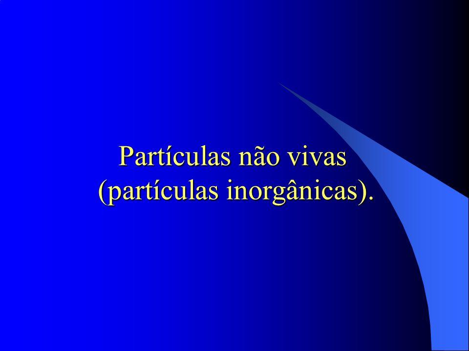 Partículas não vivas (partículas inorgânicas). (partículas inorgânicas).