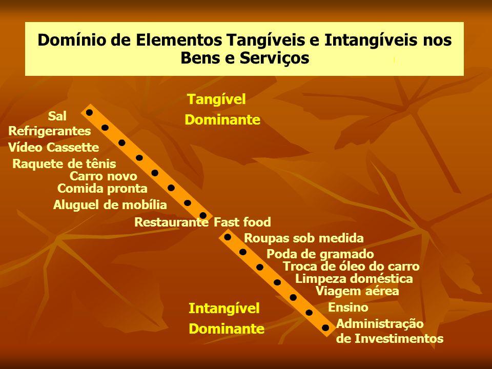 Domínio de Elementos Tangíveis e Intangíveis nos Bens e Serviços Tangível Dominante Intangível Dominante Roupas sob medida Poda de gramado Troca de ól