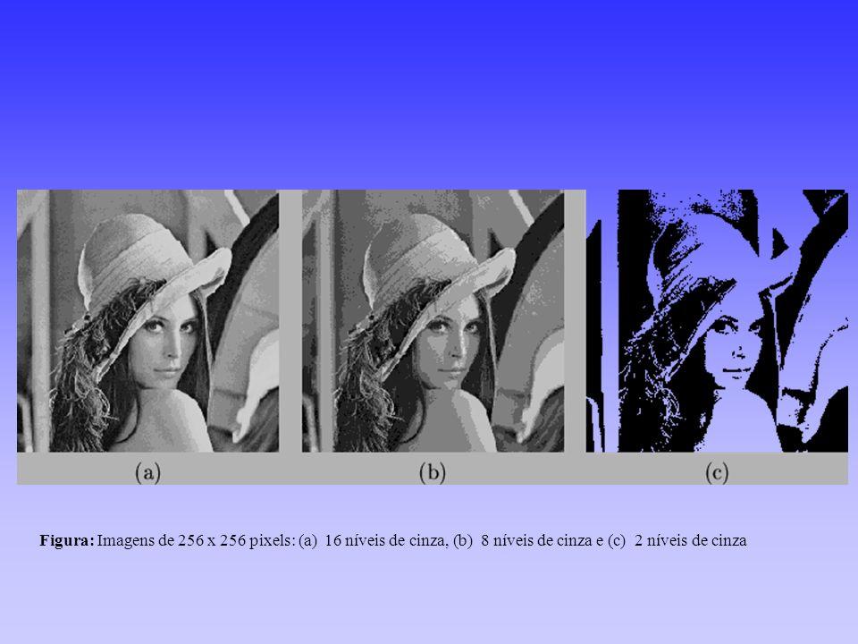 Figura: Imagens de 256 x 256 pixels: (a) 16 níveis de cinza, (b) 8 níveis de cinza e (c) 2 níveis de cinza