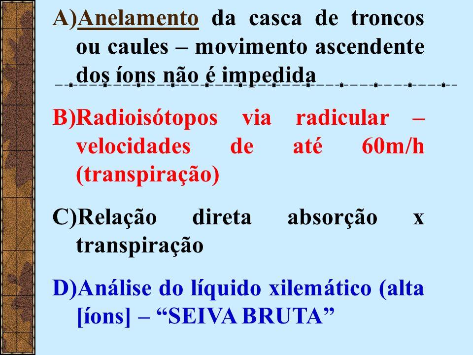 A)Anelamento da casca de troncos ou caules – movimento ascendente dos íons não é impedida B)Radioisótopos via radicular – velocidades de até 60m/h (tr