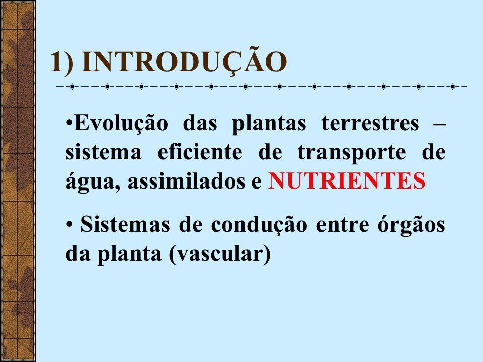1) INTRODUÇÃO Evolução das plantas terrestres – sistema eficiente de transporte de água, assimilados e NUTRIENTES Sistemas de condução entre órgãos da
