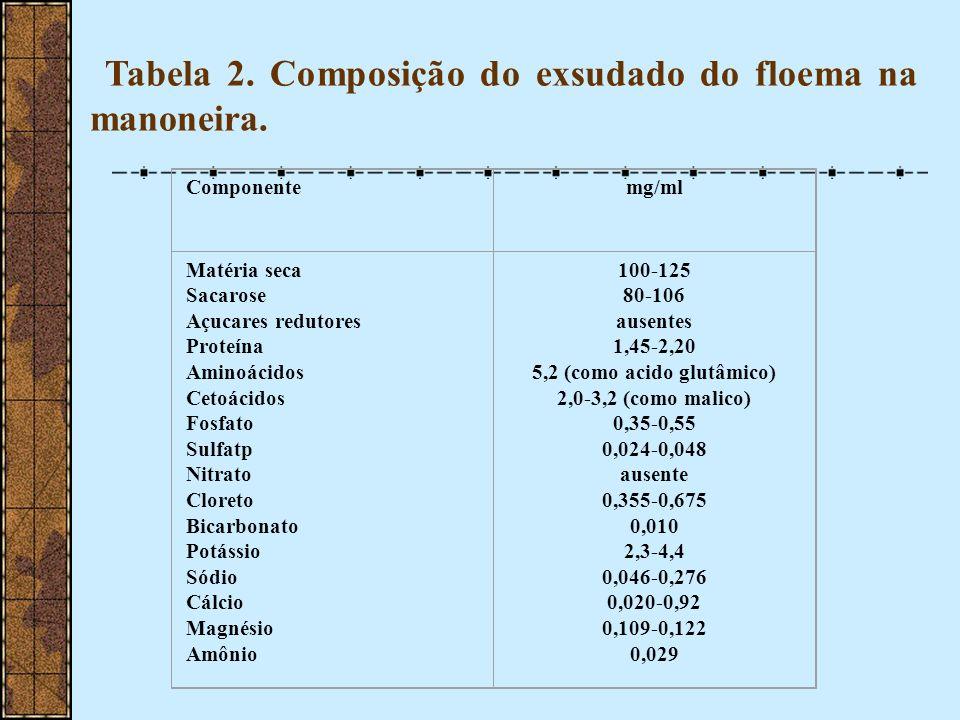 Tabela 2. Composição do exsudado do floema na manoneira. Componentemg/ml Matéria seca Sacarose Açucares redutores Proteína Aminoácidos Cetoácidos Fosf