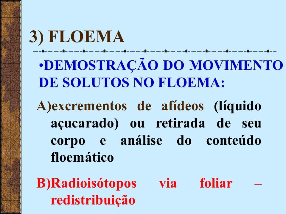 3) FLOEMA DEMOSTRAÇÃO DO MOVIMENTO DE SOLUTOS NO FLOEMA: A)excrementos de afídeos (líquido açucarado) ou retirada de seu corpo e análise do conteúdo f