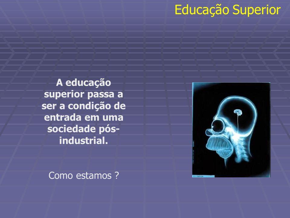 A educação superior passa a ser a condição de entrada em uma sociedade pós- industrial. Como estamos ? Educação Superior