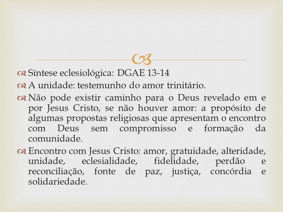 Síntese eclesiológica: DGAE 13-14 A unidade: testemunho do amor trinitário. Não pode existir caminho para o Deus revelado em e por Jesus Cristo, se nã