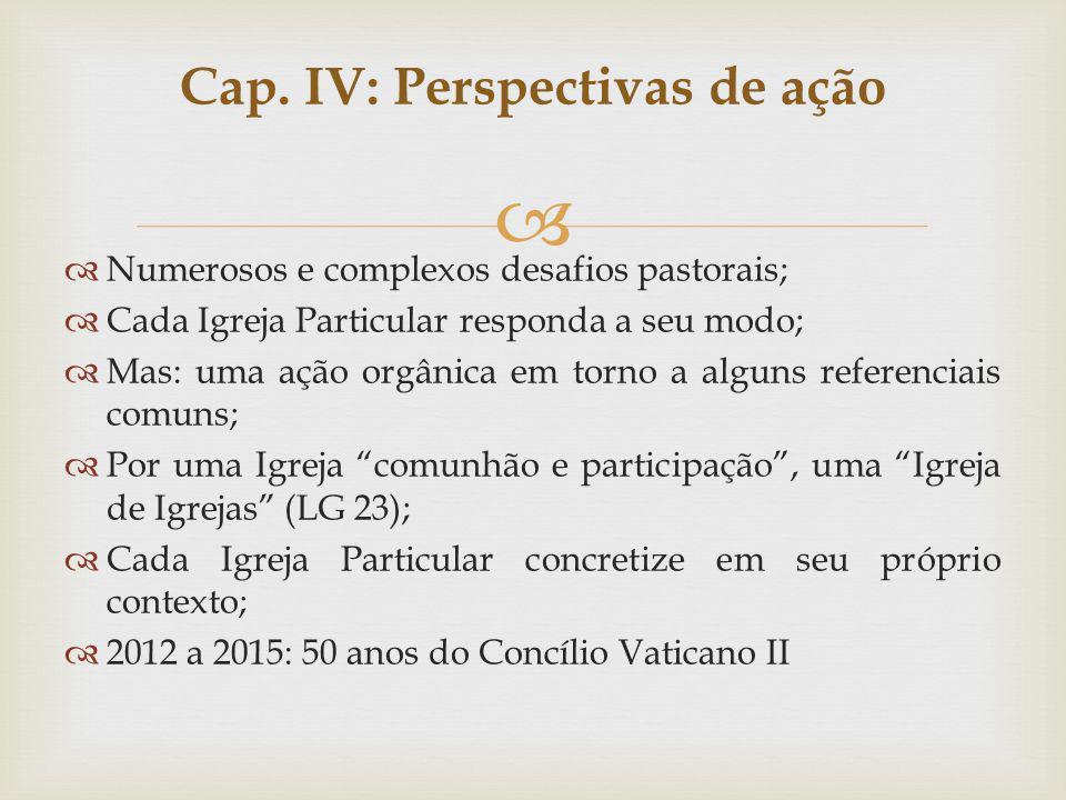 Numerosos e complexos desafios pastorais; Cada Igreja Particular responda a seu modo; Mas: uma ação orgânica em torno a alguns referenciais comuns; Po