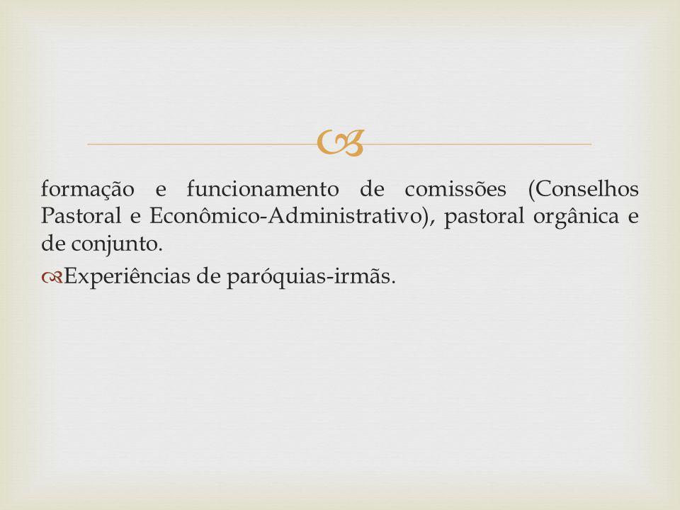 formação e funcionamento de comissões (Conselhos Pastoral e Econômico-Administrativo), pastoral orgânica e de conjunto. Experiências de paróquias-irmã
