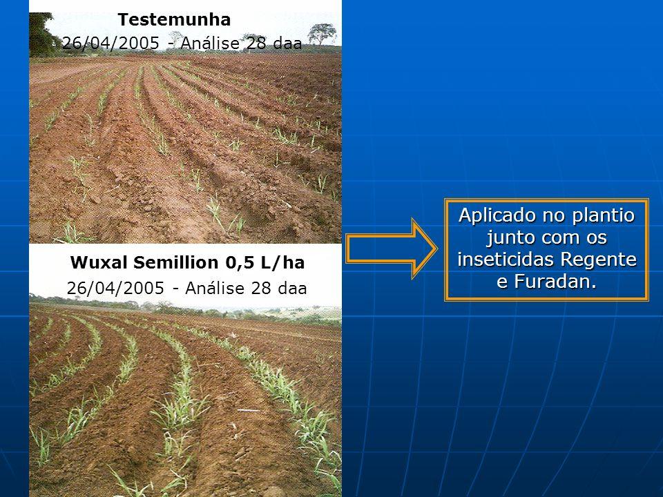 Testemunha Wuxal Semillion 0,5 L/ha 26/04/2005 - Análise 28 daa Aplicado no plantio junto com os inseticidas Regente e Furadan.