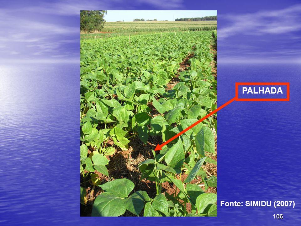 106 PALHADA Fonte: SIMIDU (2007)