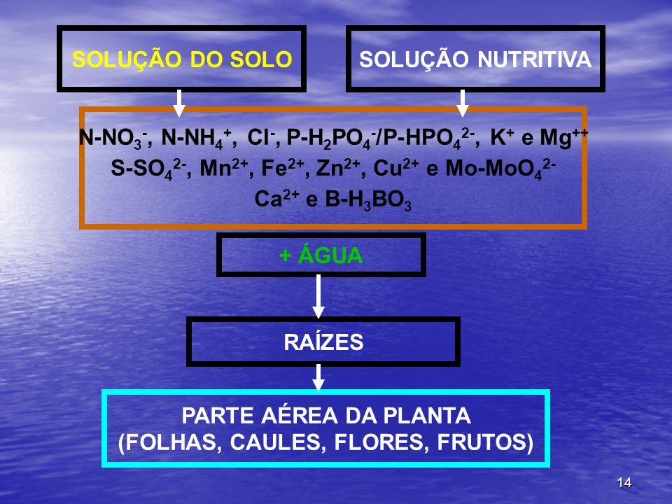 14 SOLUÇÃO DO SOLOSOLUÇÃO NUTRITIVA + ÁGUA RAÍZES PARTE AÉREA DA PLANTA (FOLHAS, CAULES, FLORES, FRUTOS) N-NO 3 -, N-NH 4 +, Cl -, P-H 2 PO 4 - /P-HPO