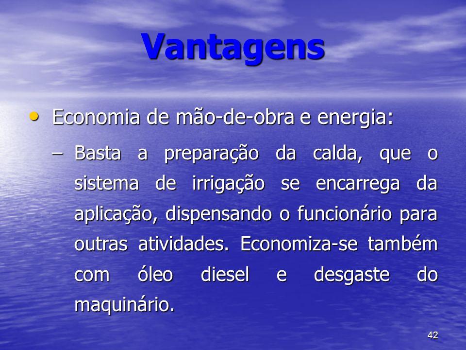 42 Vantagens Economia de mão-de-obra e energia: Economia de mão-de-obra e energia: –Basta a preparação da calda, que o sistema de irrigação se encarre