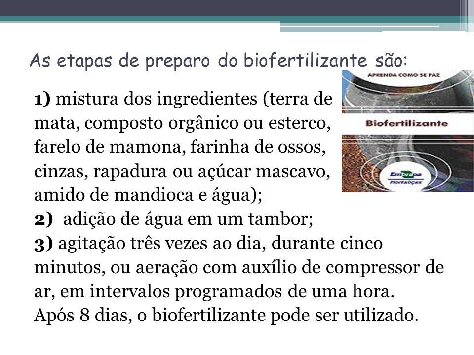 As etapas de preparo do biofertilizante são: 1) mistura dos ingredientes (terra de mata, composto orgânico ou esterco, farelo de mamona, farinha de os