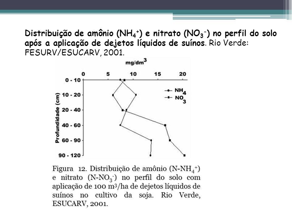 Distribuição de amônio (NH 4 + ) e nitrato (NO 3 - ) no perfil do solo após a aplicação de dejetos líquidos de suínos. Rio Verde: FESURV/ESUCARV, 200