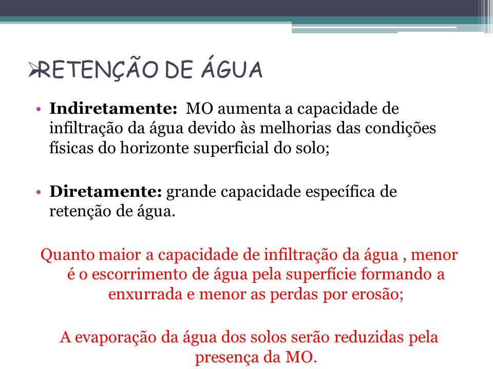 RETENÇÃO DE ÁGUA Indiretamente: MO aumenta a capacidade de infiltração da água devido às melhorias das condições físicas do horizonte superficial do s